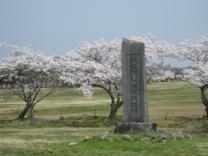 '10.04.06奈良大極殿01.jpg