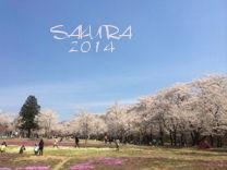 千本桜11.jpg