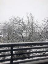 大雪2月14日からの02.jpg