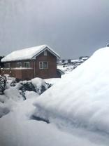 大雪2月14日からの03.jpg