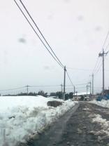 大雪2月14日からの04.jpg