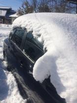雪2月8日01.jpg